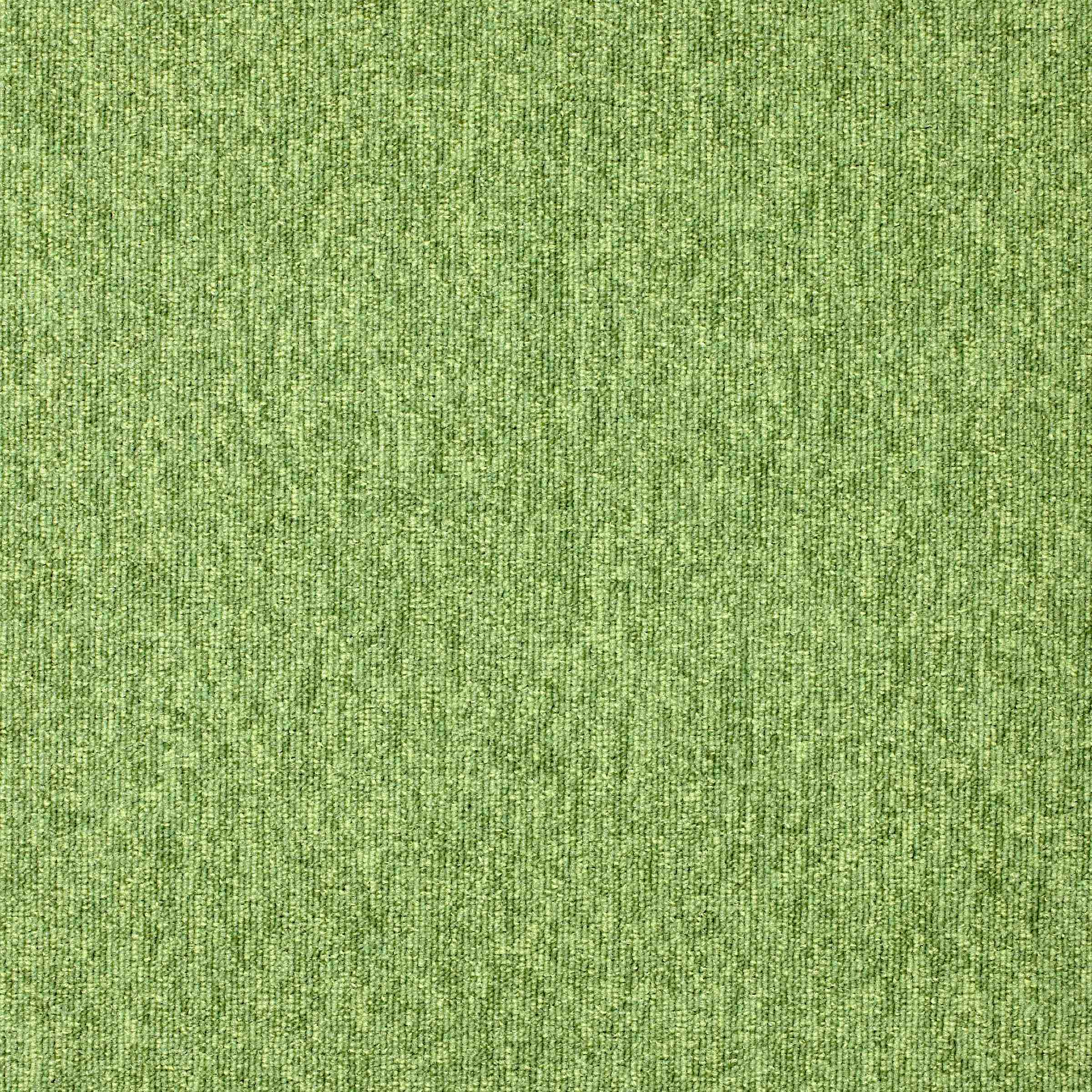Diversity | Grasshopper, 550 | Paragon Carpet Tiles | Commercial Carpet Tiles