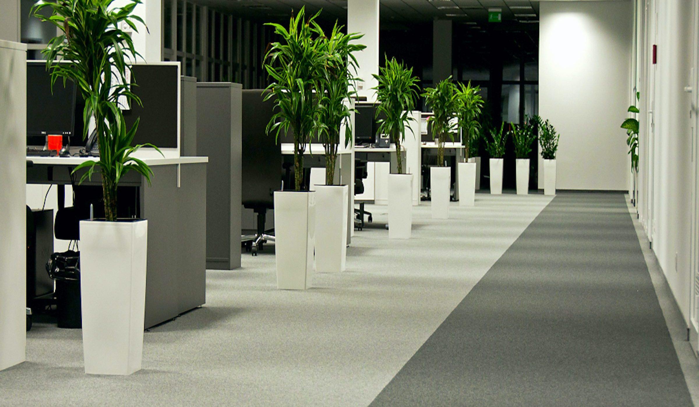 Diversity | Paragon Carpet Tiles | Commercial Carpet Tiles | Design Carpet Tiles 2