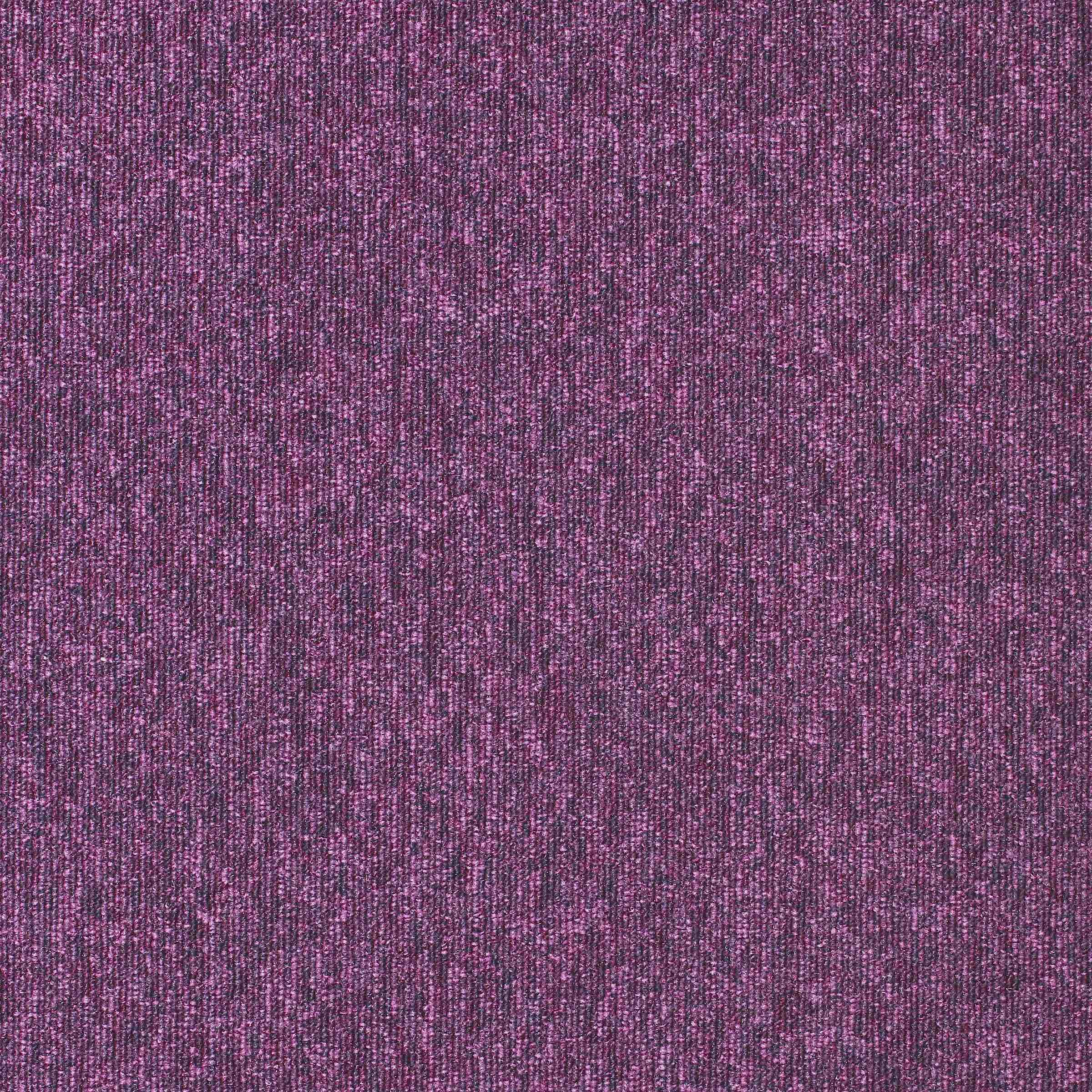 Diversity | Purple Rain, 750 | Paragon Carpet Tiles | Commercial Carpet Tiles
