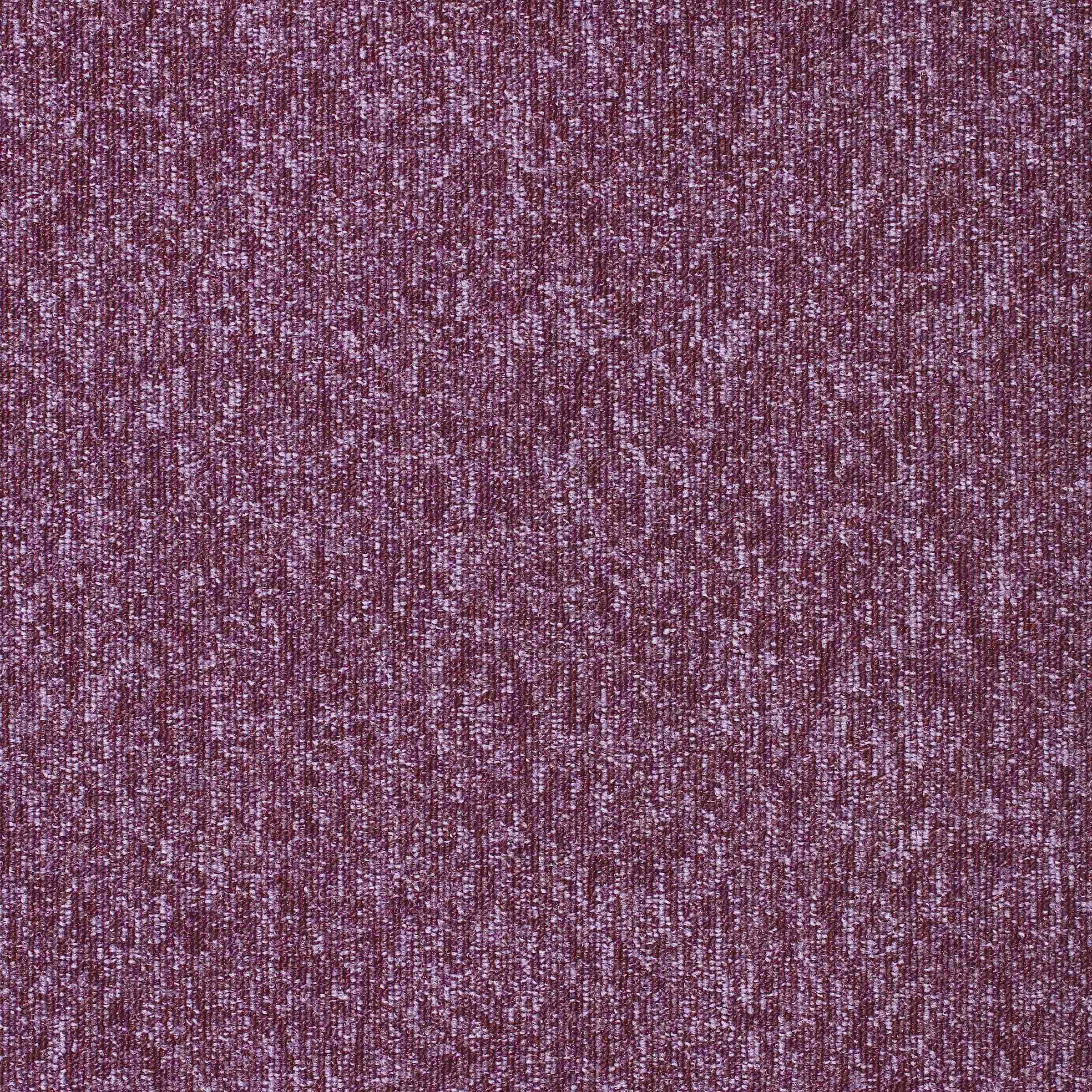 Diversity | Razzmic Berry, 740 | Paragon Carpet Tiles | Commercial Carpet Tiles