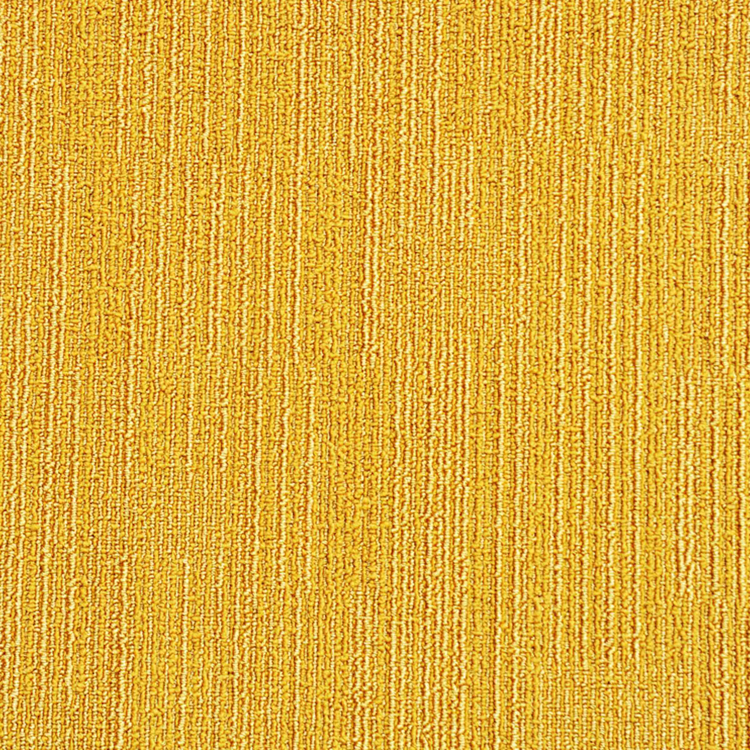 Highlights 3 Multi-Level   42413   Paragon Carpet Tiles   Commercial Carpet Tiles