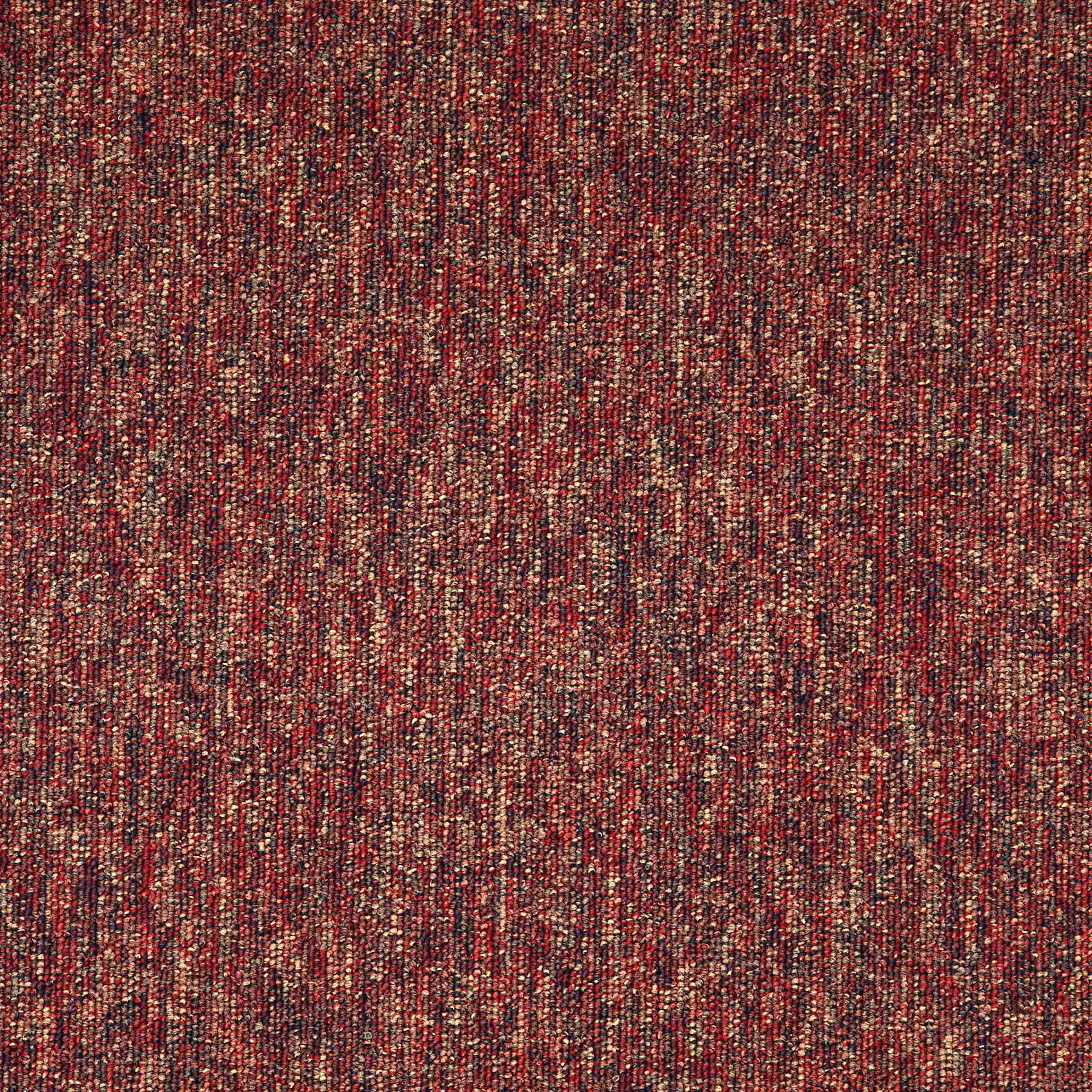 Macaw | Paprika | Paragon Carpet Tiles | Commercial Carpet Tiles