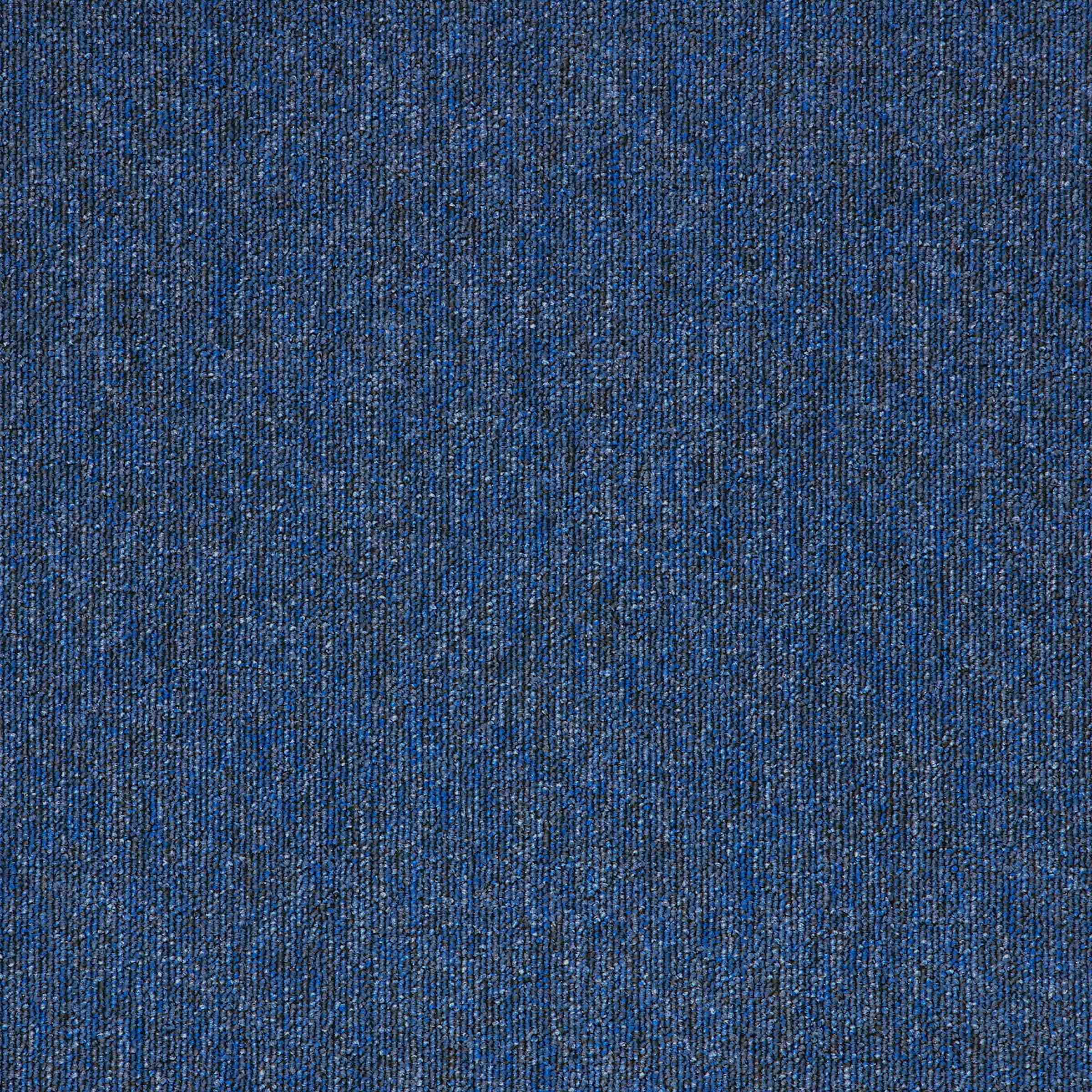 Macaw | Sapphire | Paragon Carpet Tiles | Commercial Carpet Tiles