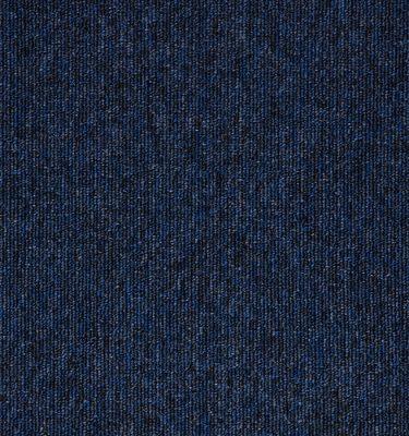 Macaw-Sapphire
