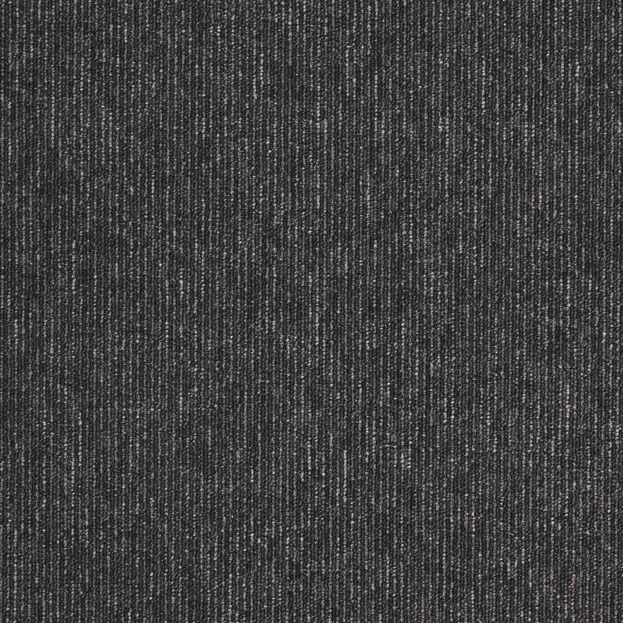 Macaw Stripe | Jet : Quartz | Paragon Carpet Tiles | Commercial Carpet Tiles