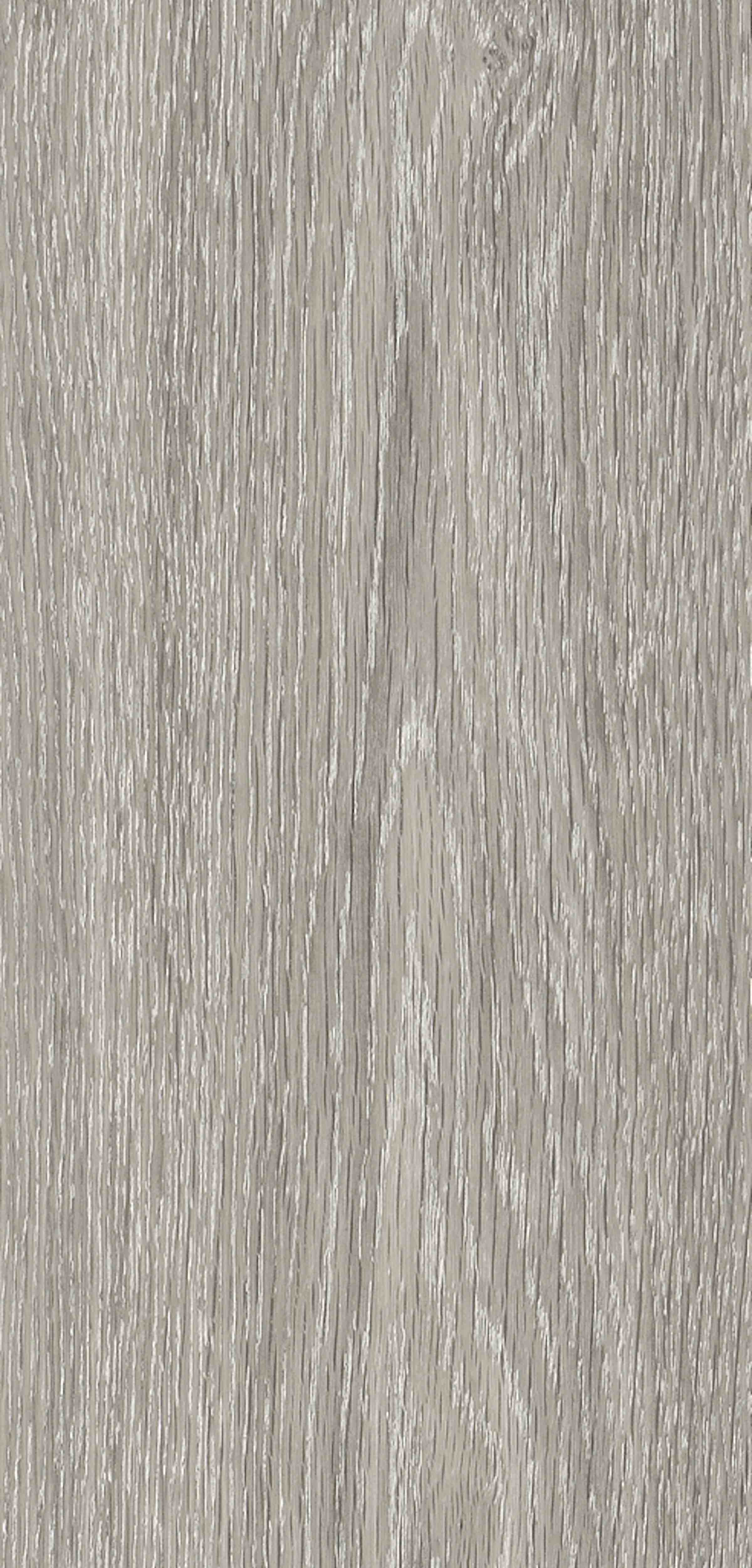 Rappórt | French Grey Elm, 2895 | Paragon Carpet Tiles | Commercial Carpet Tiles