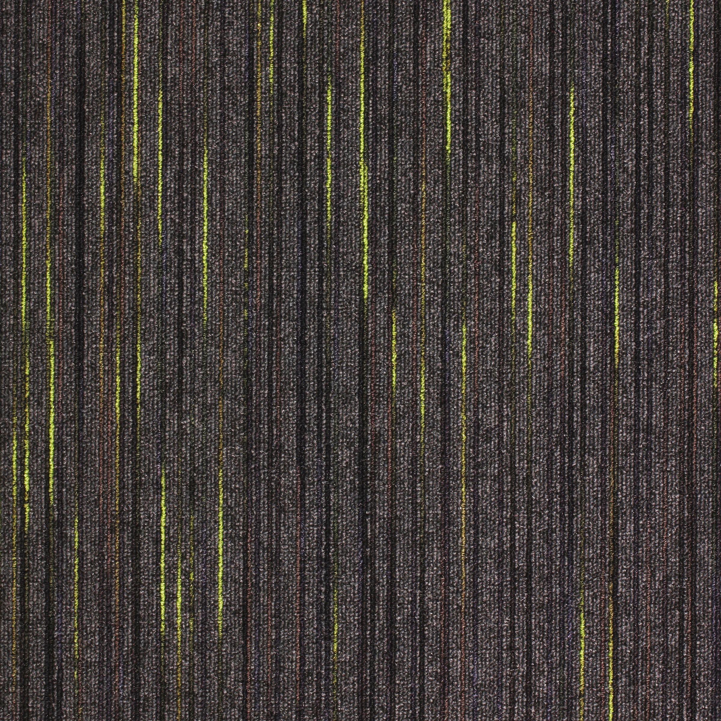 Strobe Flex Carpet Tiles Paragon Carpets