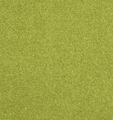 solaris-calypso